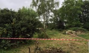 terrain constructible flines les mortagne